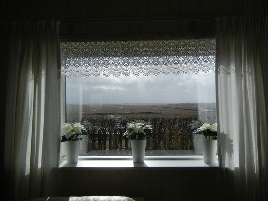 Vatnsholt: Living room window