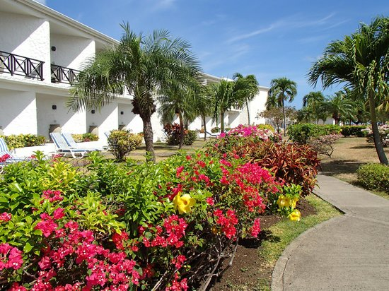 Coyaba Beach Resort : Les chambres