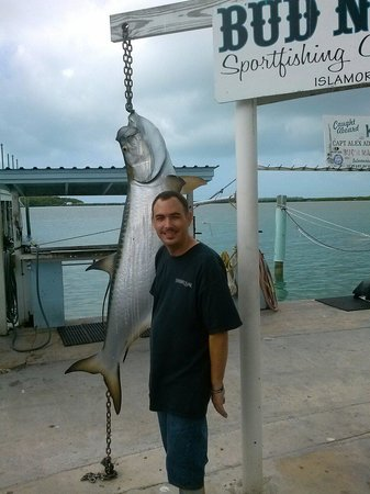 Bud n' Mary's Sportfishing Marina & Restaurant: would have been great to catch this tarpon !