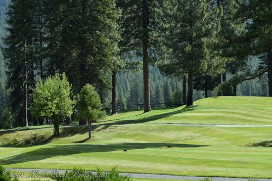 Plumas Pines Golf Course