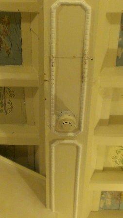 Hotel Navona : Wood Rotten Ceiling 1