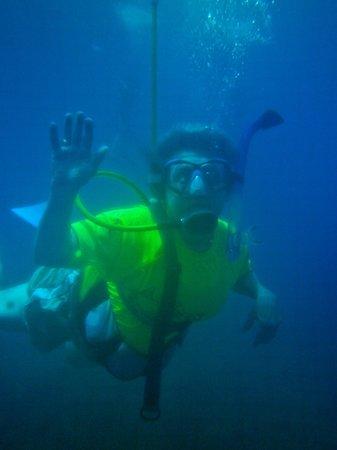 Aqua Adventures: happy snuba diver....