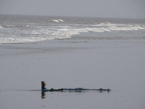 Сурат, Индия: ubrat beach