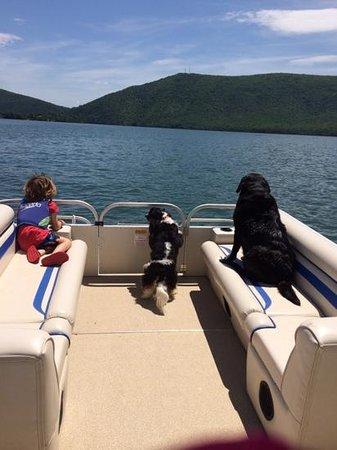 Smith Mountain Lake : awesome ! , Isn't it?
