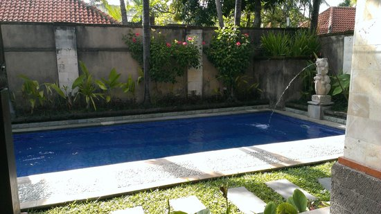The Club Villas: 早晨的泳池