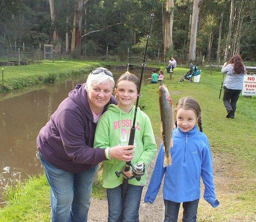 Australian Rainbow Trout Farm: Children having fun