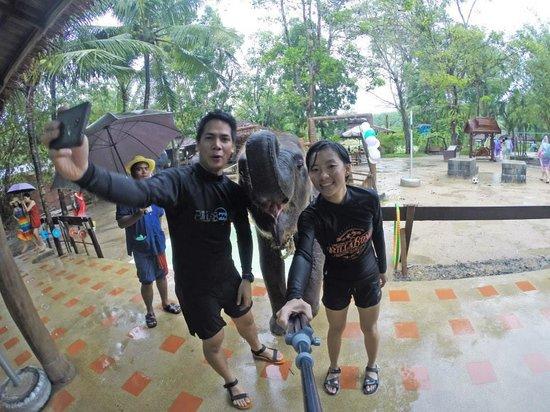 JC Tours: Elephant Selfie