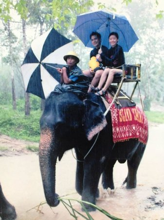 JC Tours: Elephant (scanned picture)