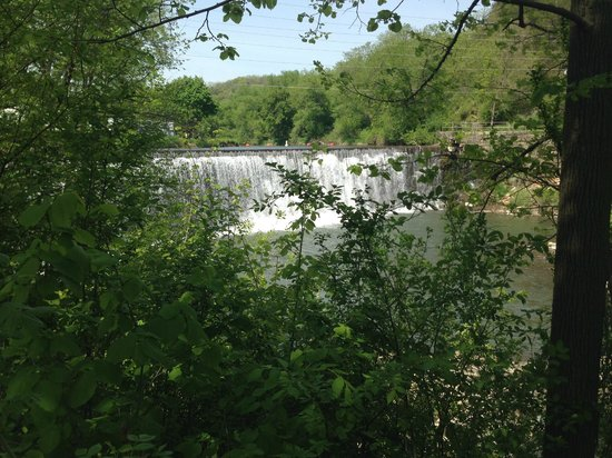 Thompson House Bed & Breakfast: Lanesboro Dam - View from the backyard