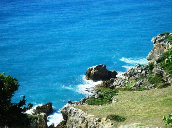 Hotel Costa Larimar: Camino a la Bahia