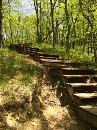 Perrot State Park: trail back down