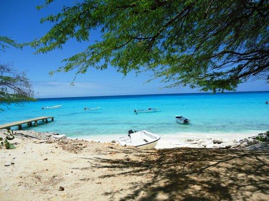 Hotel Costa Larimar : Bahia de las Aguilas
