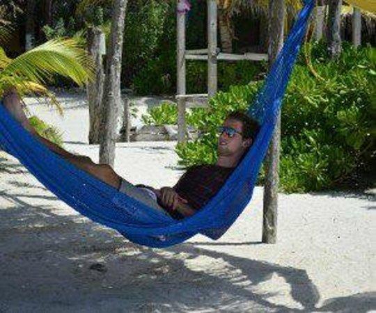 Hamacas en la playa picture of casa maya holbox holbox - Hamacas de playa ...