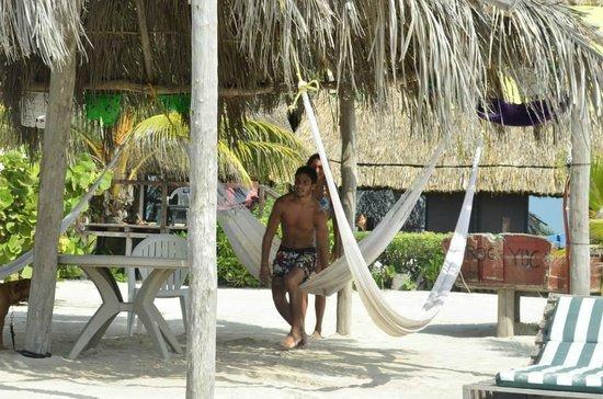 Casa Maya Holbox: Palapa del hotel con hamacas, mesas y sillas.