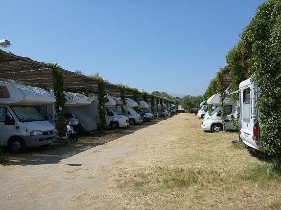 Camping Meltemi: camping area