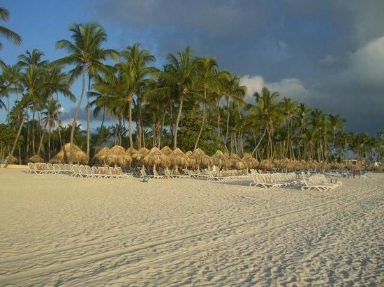 Meliá Caribe Tropical: beach chairs and palapas on Bavaro Beach