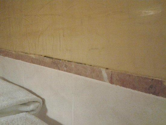 Barcelo Maya Caribe: Bathroom Mold