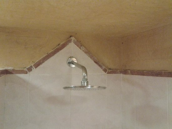 Barcelo Maya Caribe : Bathroom Mold