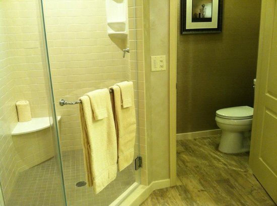 AmishView Inn & Suites: A spacious shower and the separate water closet