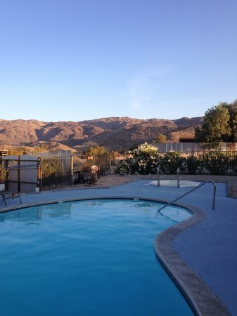 Harmony Motel: View from the pool
