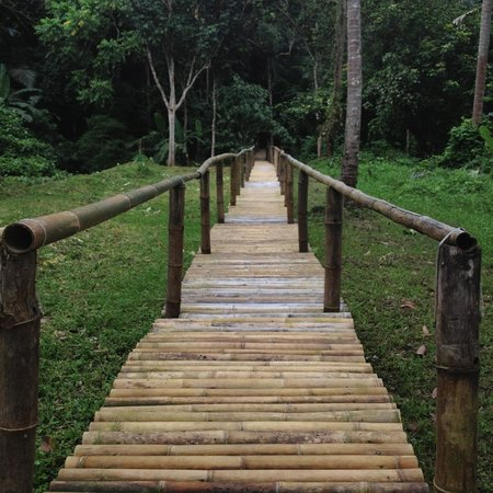Hidden Valley Springs Resort: Bamboo pathway to the falls