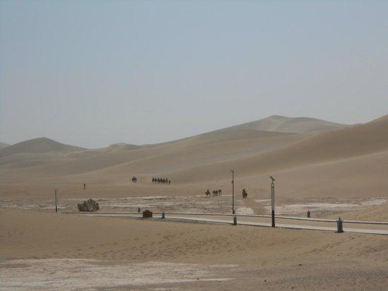 Mingsha Shan (Echo Sand Mountain) Park, Dunhuang, China: 鳴沙山とラクダの隊列