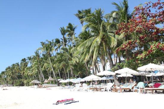 Surfside Boracay Resort & Spa: Как же хочется вернуться!!!!