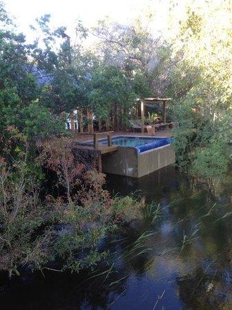 Tongabezi : Our own private pool