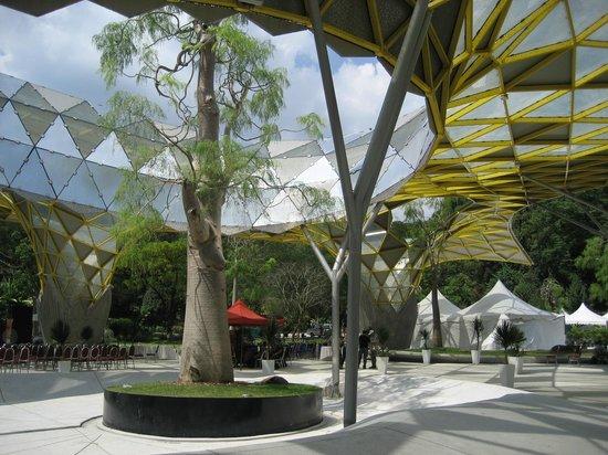 Perdana Botanical Garden: The New Canopy