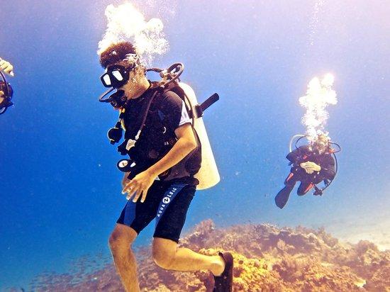 Andys Scuba Diving Phuket : Scuba