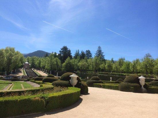 Fuente carrera de caballos picture of jardines de la for Jardines la granja