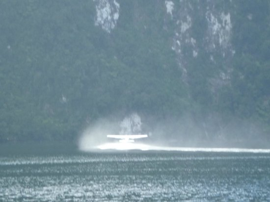 Wings & Water: Leaving the fiord