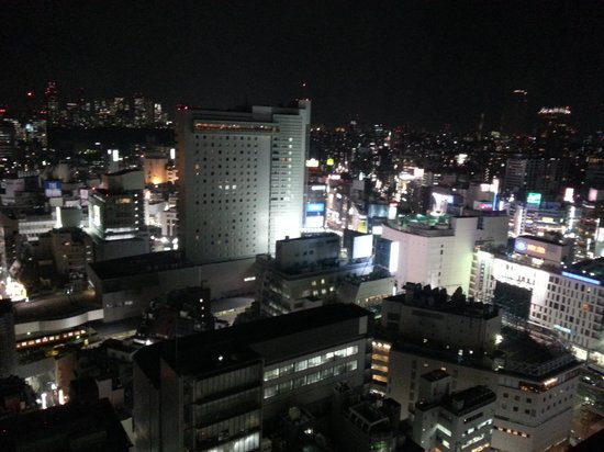 Cerulean Tower Tokyu Hotel: nighttime view