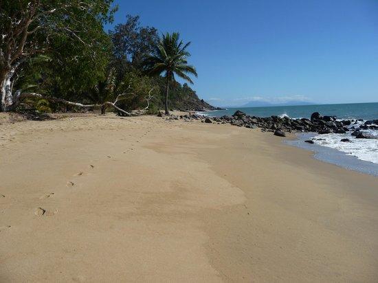 Turtle Cove Beach Resort: the perfect beach