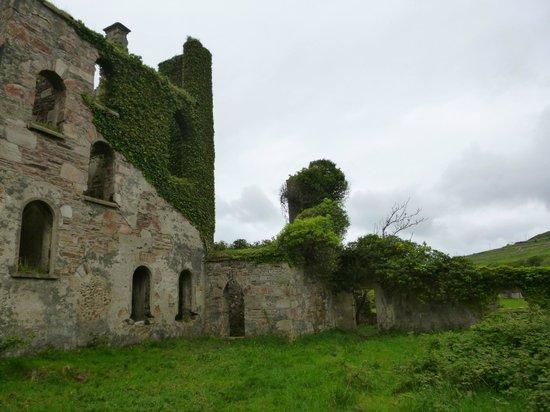 Clifden Castle Up close