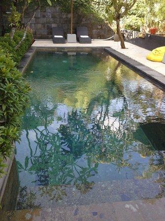 The Studio Bali: small but nice