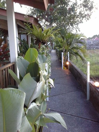 The Studio Bali: walkway to our foom