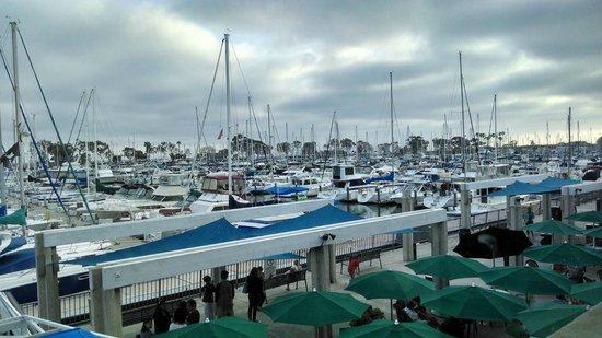 Harpoon Henry's Seafood Restaurant : Nice harbor sunset view