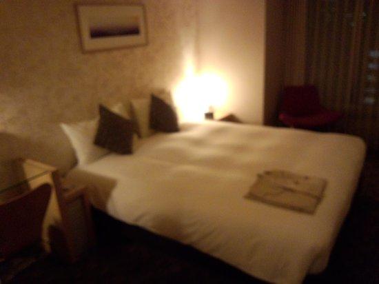 Hotel Resol Trinity Sapporo: シングル料金で案内されたのはダブルベッドでした