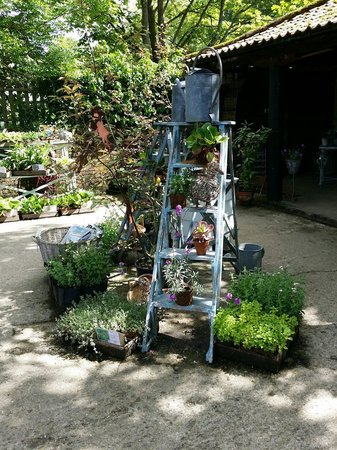 West Green House: Great ideas for your garden