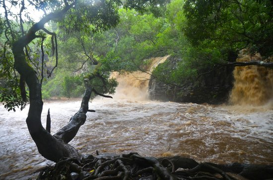 Hike Maui : Raging waters at Twin Falls that day!