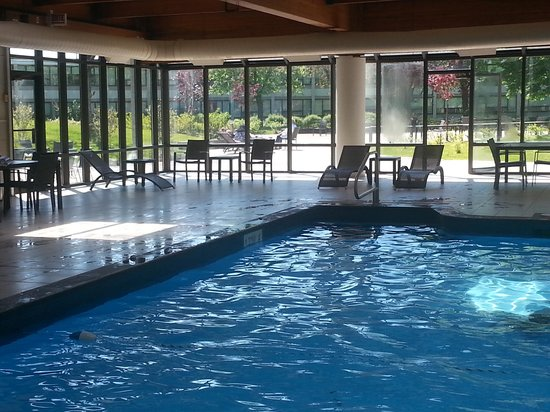 Sheraton Montreal Airport Hotel : Pool