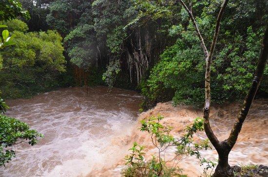 Hike Maui : No jumping off this waterfall... :-(