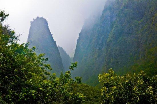Hike Maui : Iao Needle