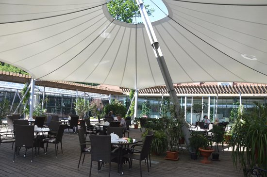 Lańcut Castle: The Orchid House Café