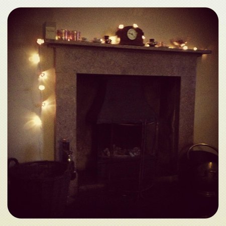 Crosthwaite House: The lovely mantlepiece in the main sitting room
