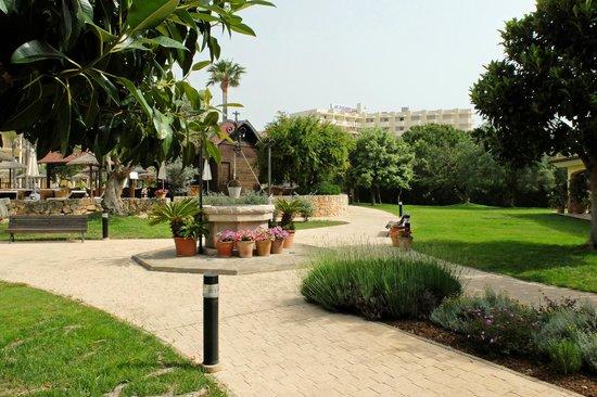 SENTIDO Mallorca Palace: Aussenanlage