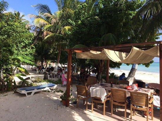 Cocoplum Beach Hotel : пляж