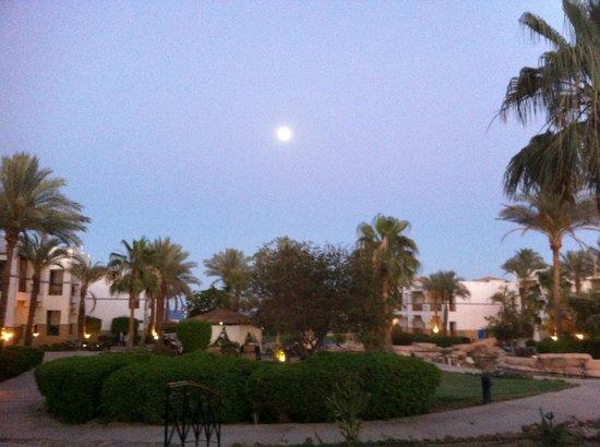 Otium Hotel Amphoras: view