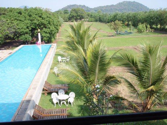 Thilanka Resort and Spa : lush green surrounding